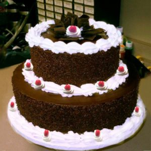 Mohali Bakers - 2 tier cake